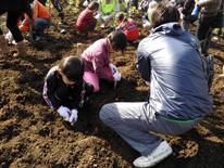 環境保全「霧島市10万本植林プロジェクト」への参加